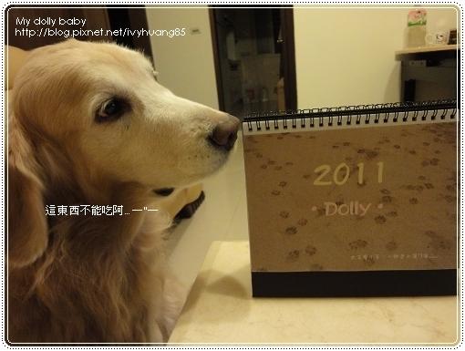 2010.12.20 14.jpg