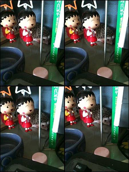 2011-7-20刺妹黑D跟我來上班~ 009.jpg