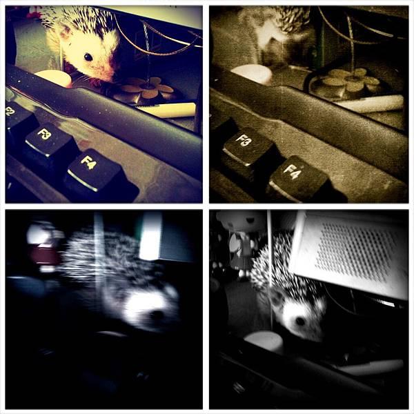 2011-7-20刺妹黑D跟我來上班~ 011.jpg
