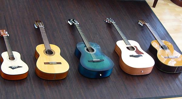 Guitar_005.JPG