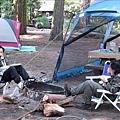 Camping - 2009 016
