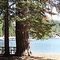 Camping - 2009 033