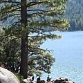 Camping - 2009 088