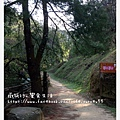 綠葉方舟(步道-2)