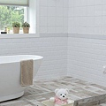 bathroom-1872193_640.jpg