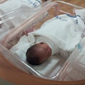 newborn-baby-2067983_640.jpg