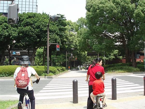 橫濱很綠油油