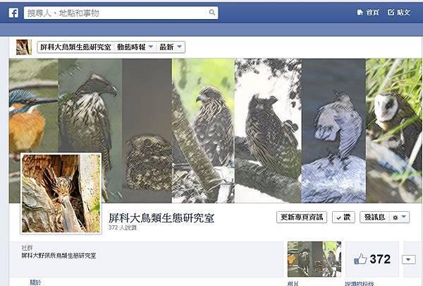 屏科大鳥類室FB