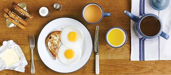 falcon.banner.eggs.jpg