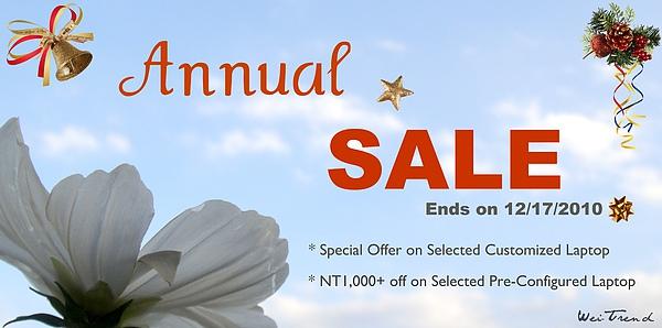 2010 annual sale wei-trend.jpg
