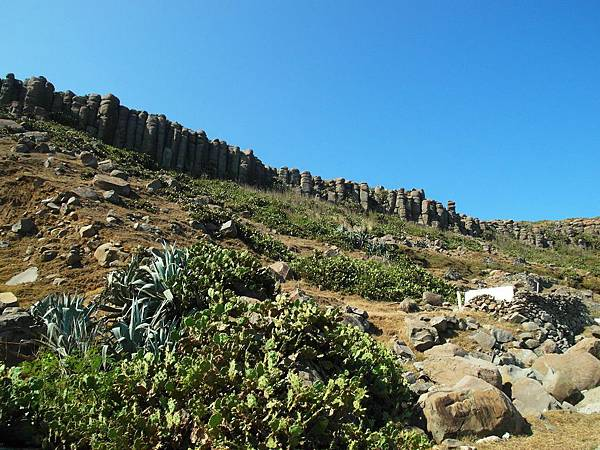 虎井山上玄武岩