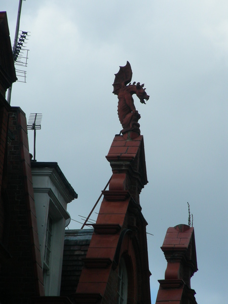 屋頂上有龍!
