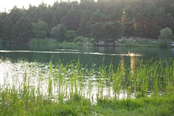 Bolu 湖畔
