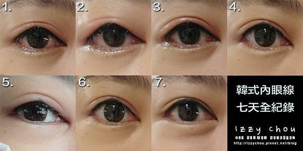 紋繡眼線 全紀錄