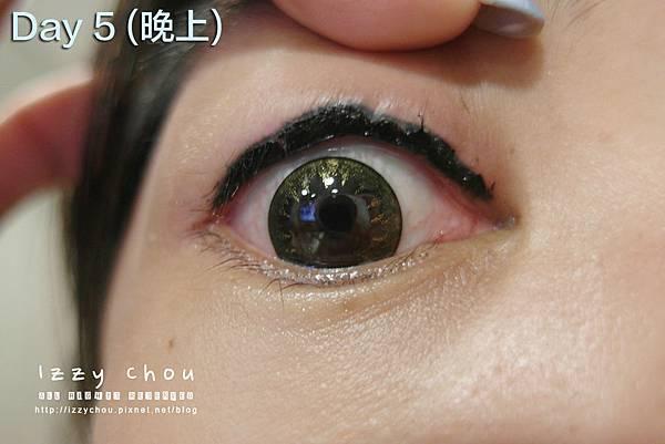 紋繡眼線 第五天