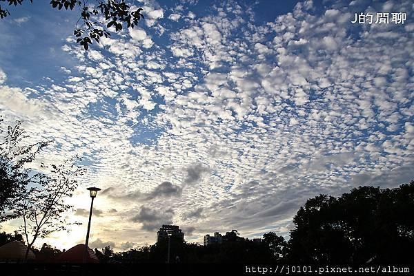 20111106-088.jpg