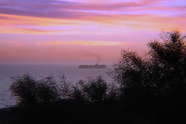 Sunrise h.jpg