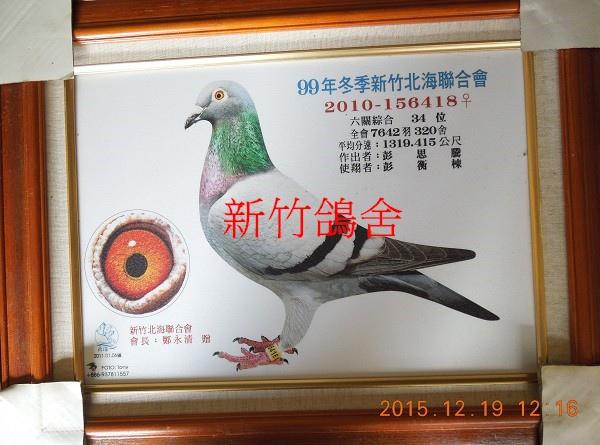 DSCN8490