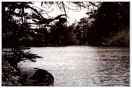 A金門公園3.jpg