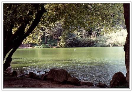 A金門公園8.jpg