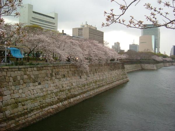 大阪公園 (3).JPG
