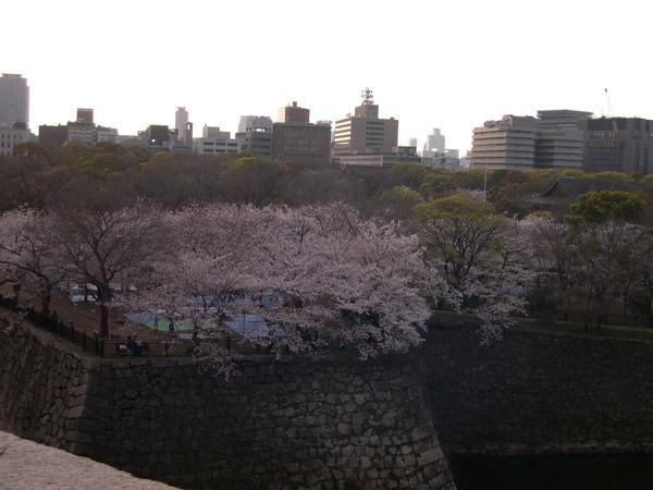 日本京阪神 2007.4.3-4.7 (13).JPG