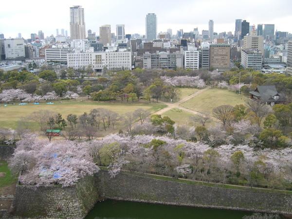日本京阪神 2007.4.3-4.7 (2).JPG