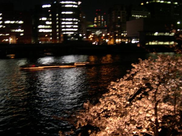 日本大阪造幣局 2007.4.3-4.7 (97).JPG