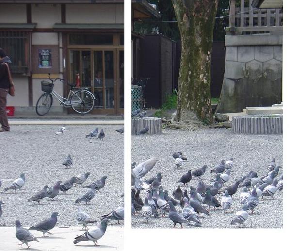 東本願寺 (14).jpg