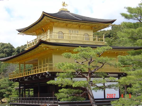 金閣寺-京都   (5).JPG