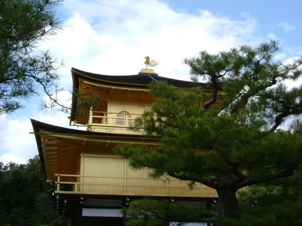 金閣寺-京都   (6).JPG
