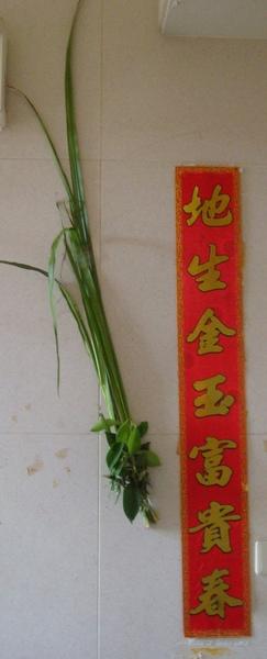 200905端節昌浦 (3).JPG