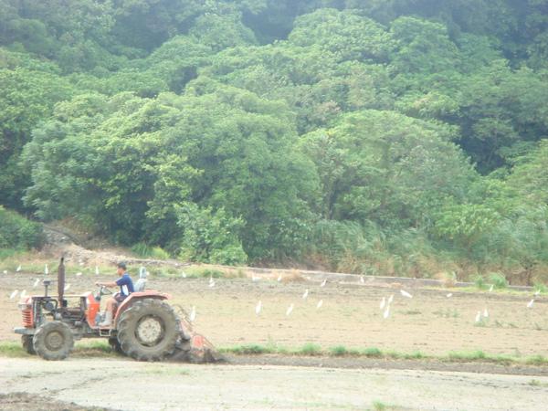 20090927 (10).JPG
