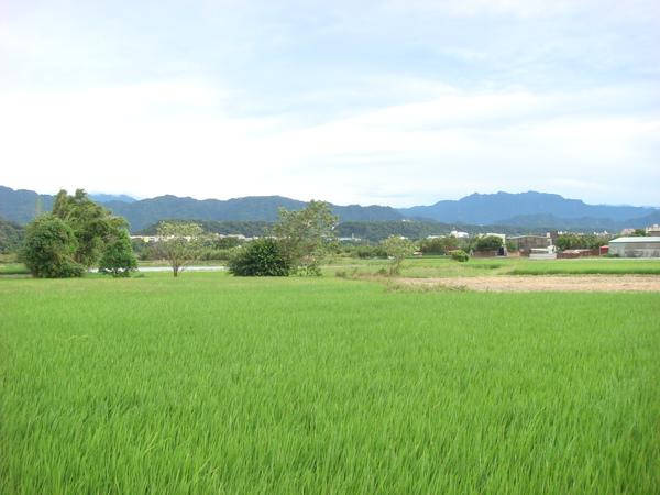 20090927 (24).JPG