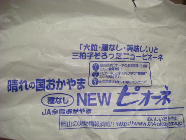 200910-日本葡萄  (8).JPG