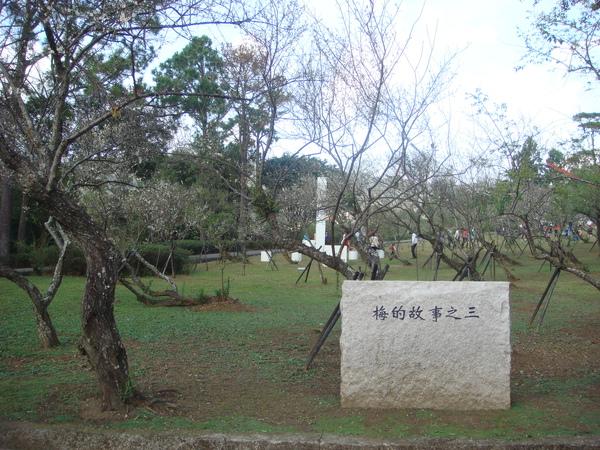 2010.01 (48).JPG