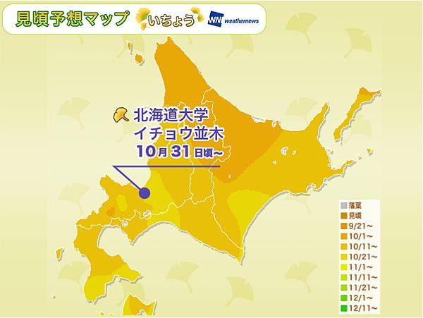 北海道盛開預測-2017銀杏.png