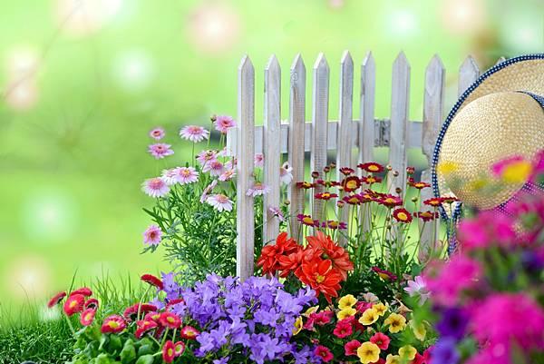 609994-flower-garden 012