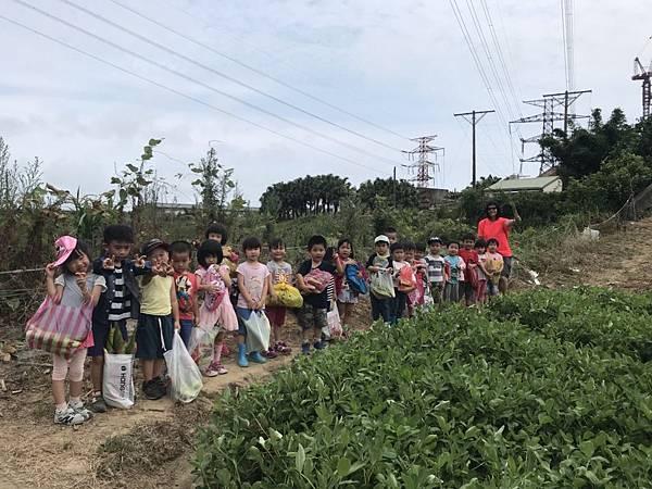 小班玉米 (37).jpg