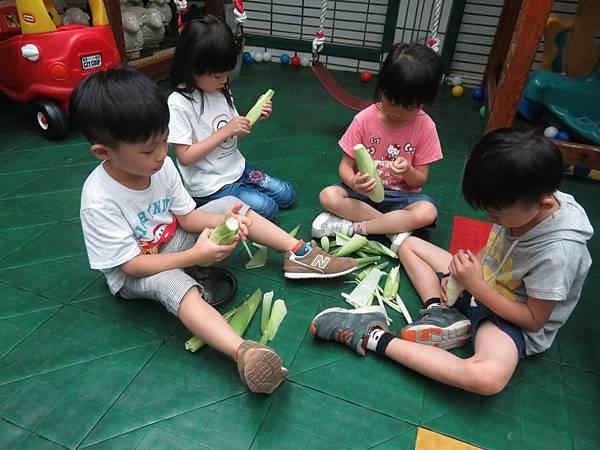 中班玉米 (58).jpg