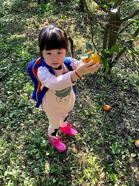 2019.01.19 採橘子_190119_0049.jpg
