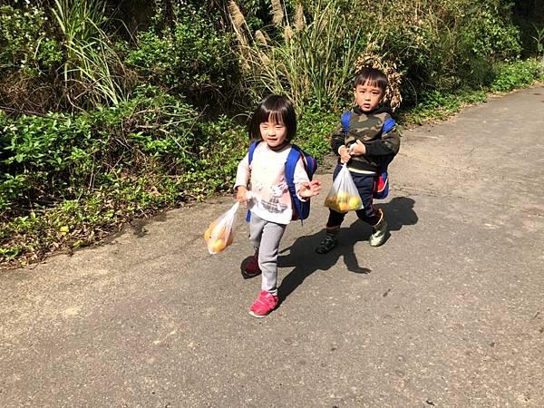2019.01.19 採橘子_190119_0067.jpg
