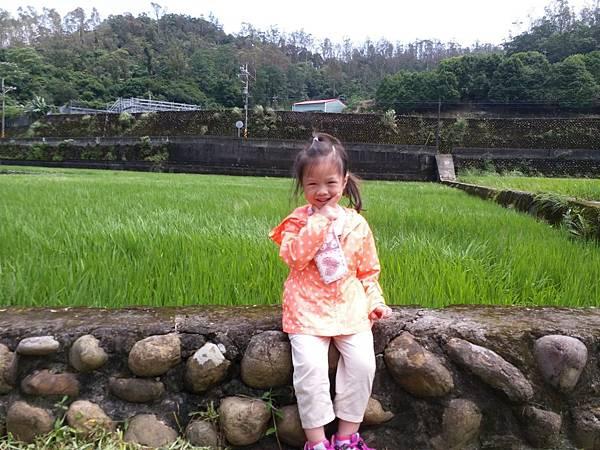 0530大班看稻子_190531_0052.jpg