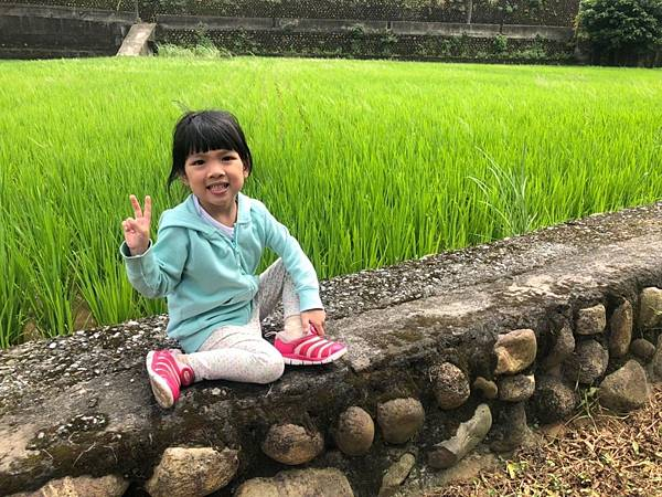 0530大班看稻子_190531_0114.jpg