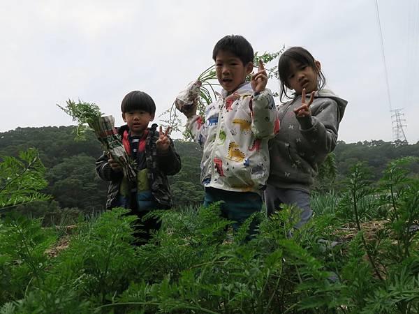 拔蘿蔔_200211_0040.jpg