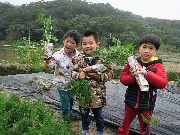 拔蘿蔔_200211_0061.jpg