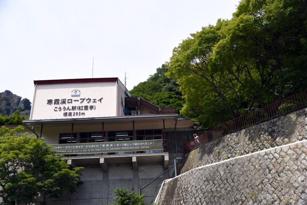 01-DSC_0228.JPG