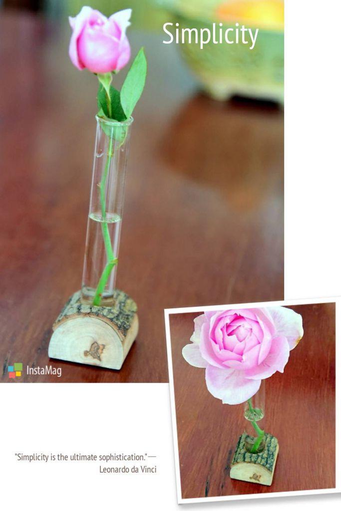 試管花瓶1_0_212204.jpg