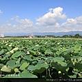 小南海風景區 (49)