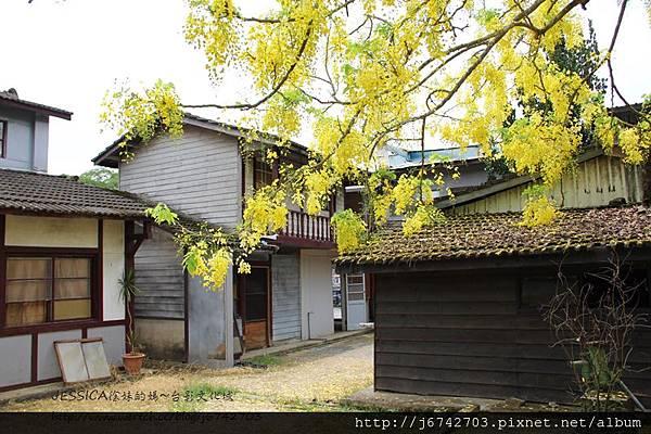 台南白河台影文化城 (47)